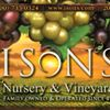 Ison's Nursery & Vineyard