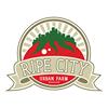 Ripe City