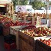 Jansens Fruit Market