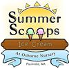 Summer Scoops