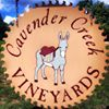 Cavender Creek Vineyards and Winery