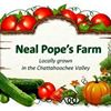 Neal Pope's Farm