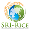SRI-Rice (SRI International Network and Resources Center)