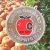 Curtis Orchard & Pumpkin Patch