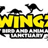 Wingz Bird & Animal Sanctuary