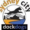 Sydney City DockDogs