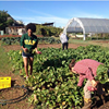 UAB Service Learning