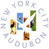 NYC Audubon