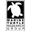 Marine Turtle Research Group