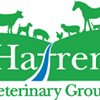 Hafren Veterinary Group - Small animal