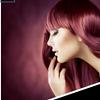 Bold Beauty Academy Student Salon