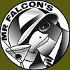 Mr Falcon's