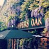 The Cowpers Oak