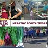 Healthy South Texas-Brooks, Duval, Jim Wells and Kleberg/Kenedy Counties