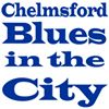 Blues & Roots in the City Chelmsford