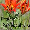 Prairie Permaculture