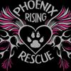 Phoenix Rising Rescue