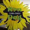 Run Dog Farmstead