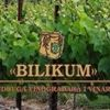 """Udruga vinogradara i vinara """"Bilikum"""" Križevci"""