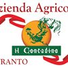 Agriturismo Il Contadino