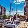 Hoboken Sailing Club thumb