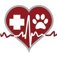 Central Pet   -    Hospital de Mascotas