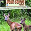 The Deux-Sèvres Monthly