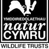 Wildlife Trusts Wales