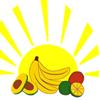 Banana Distributors of New York, Inc.