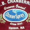 K.D.B. Cranberries