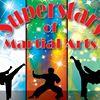 Superstars of Martial Arts