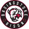 Basingstoke Bison