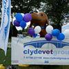 Clyde Vet Group Small Animal Hospital
