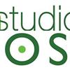 The Green Studio in Belgrade