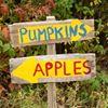 Red Apple Farm