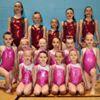 Everyone Active School of Gymnastics