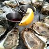 York River Oyster Company