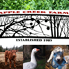 Apple Creek Farm