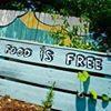Food is Free East Coast