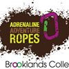 Adrenaline Adventure Ropes