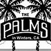 The Palms Playhouse