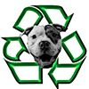 Recycle-A-Bull Bully Breed Rescue Inc.