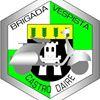 Brigada Vespista de Castro Daire