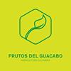 Frutos del Guacabo