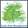 Cedar Risk Management