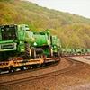 Tecman International -Green