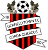 Uckfield Town F.C.