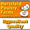 Hertzfeld Poultry Farms, Inc.