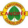 Canopée Guadeloupe: Canyon & Randonnée