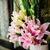 Oui Florals & Events